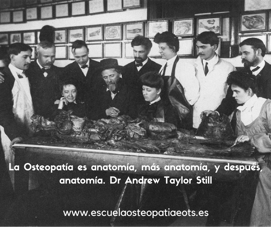 curso de osteopatia en asturias